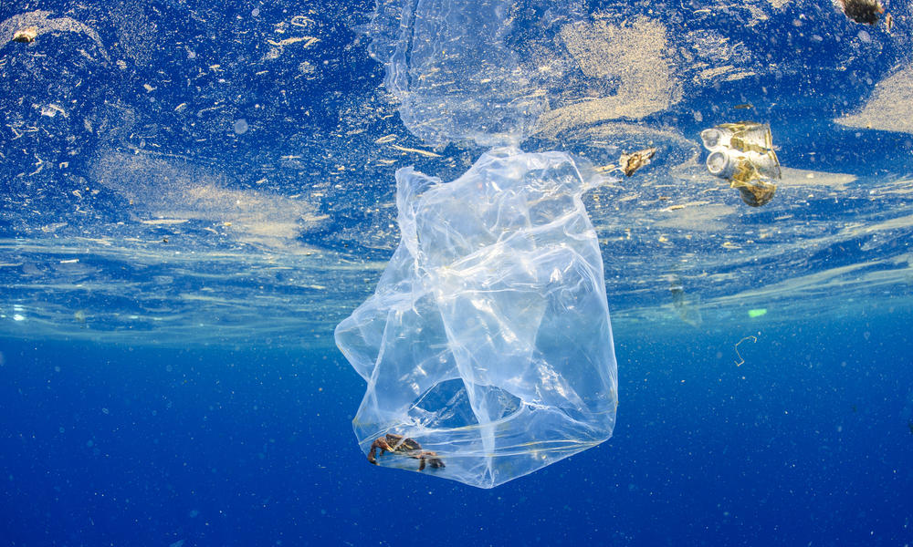 World Wildlife Fund: Working with Companies to Fix the Plastic Crisis – on World Oceans Day and Every Day