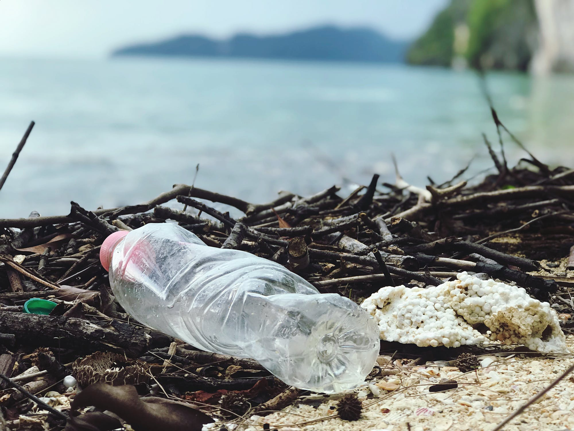 Our Daily Planet: New WWF Report Highlights Challenges and Solutions in Corporate Plastic Management